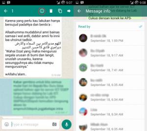 trik mengetahui pesan sudah terbaca whatsapp