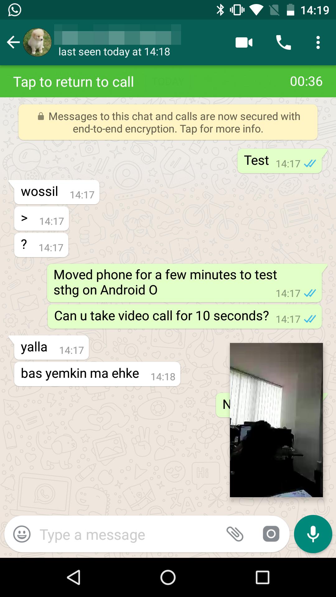 Aplikasi WhatsApp Web Akan Miliki Mode Picture-in-Picture
