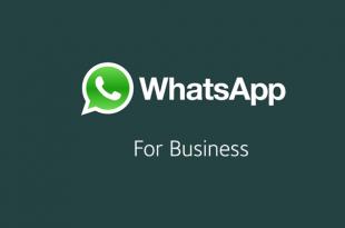 Cara Mudah Mengaktifkan Fitur Balas Pesan Otomatis Di WhatsApp Business