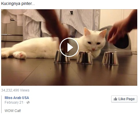 Cara download video facebook tanpa software