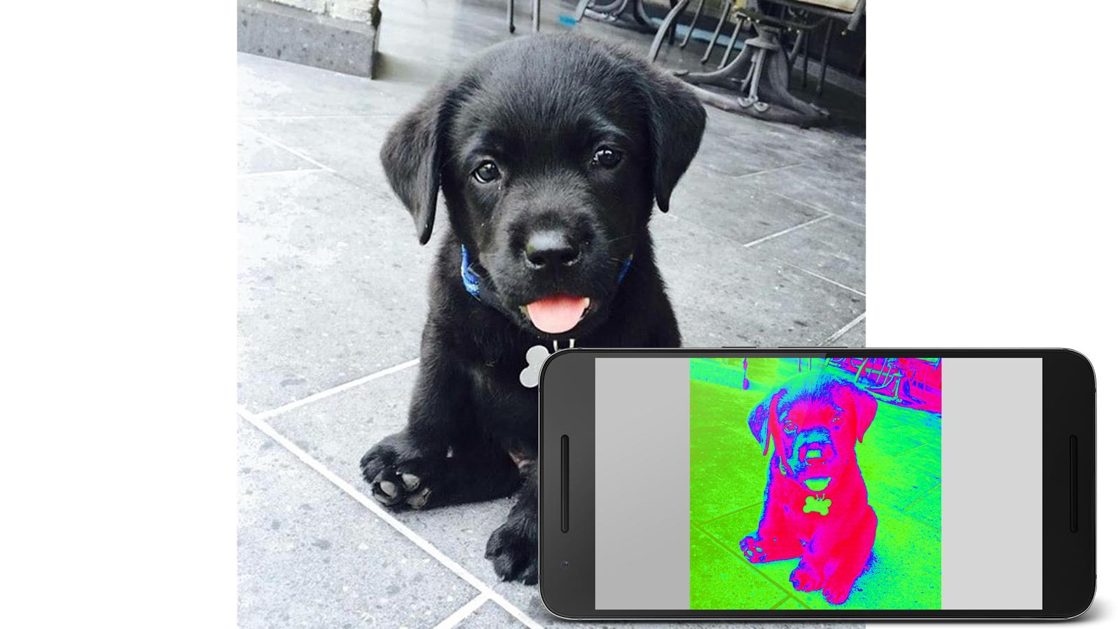 Cara Mudah Mengaktifkan Fitur Kamera Pendeteksi Panas di Android