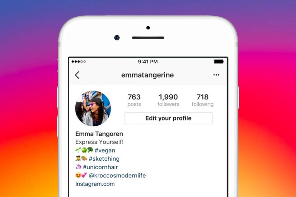 Kini Bio Instagram Dapat Ditambahkan Hashtag dan Link Profil